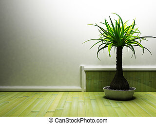 a nice palm in the dark room