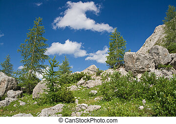 alpine panorama - beautiful panorama in italian Dolomites...