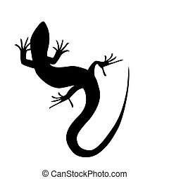 Beautiful monochrome lizard, lizard silhouette Vector...