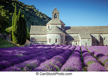 Abbey Senanque Provence France