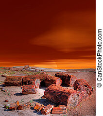Petrified Forest Sunset - Sunset scenic landscape of ancient...