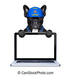 handyman dog worker with helmet behind blank white pc...