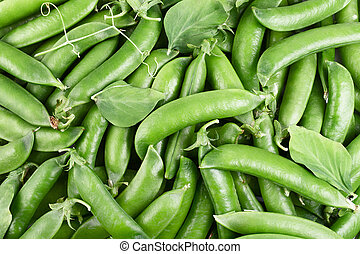 green beans - Freshly picked green peas for your background