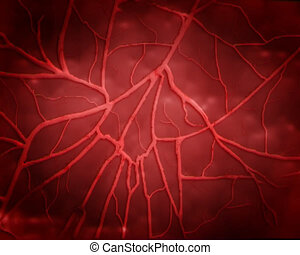 haert zoom - heart beat with zoom in blood vessel