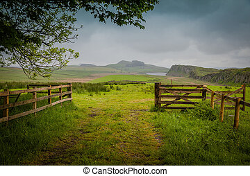 Green meadows and hills along Hadrian's Wall