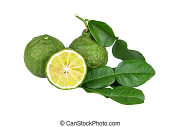 Bergamot. - Bergamot and kaffir lime leaves on white...