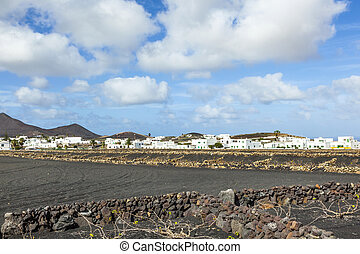 appartments with palm tree in Yaiza built in volcanic area -...