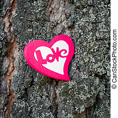 Heart on tree - A red heart on a tree trunk