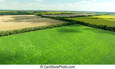 Aerial view of harvest field landscape