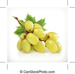Bunch of green grapes