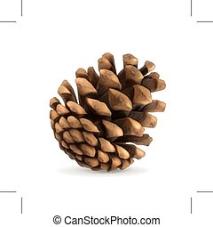 Pine cone illustration - Pine cone vector illustration,...
