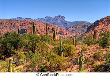 Desert Mountains - Cliffs and rock formations in arizona...