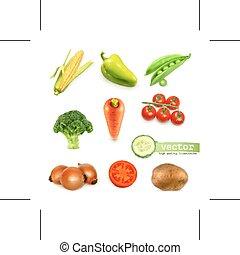 Vegetables vector illustration - Set with vegetables vector...