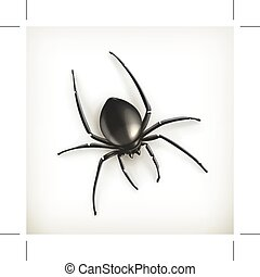 Spider vector illustration, isolated on white background
