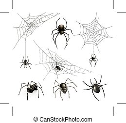 Spiders and spider web - Set with spiders and spider web,...