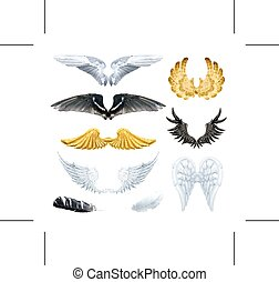 Wings  - Set with wings, isolated on white background