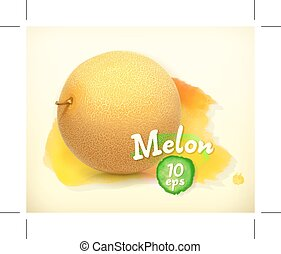 Melon, watercolor background, vector illustration