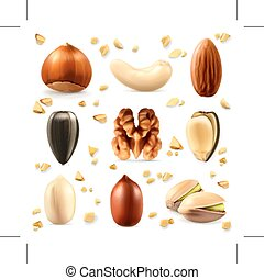 Nuts vector icons - Set with nuts, vector icons, isolated on...