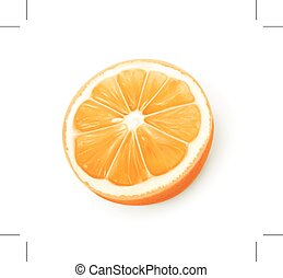 Orange fruit illustration - Orange fruit, illustration,...