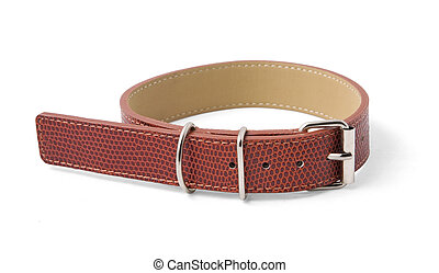 Dog collar with clipping path