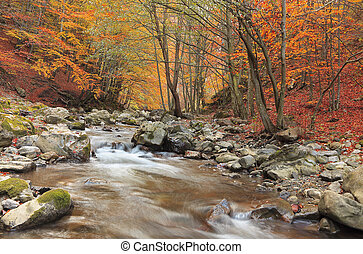 Autumn river - Beautiful autumn forest with a river in Ramet...
