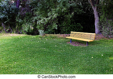 Park Bench with Trees in Area to Rest - Wooden park bench to...