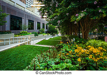 Flowers and trees at Freedom Park, in Rosslyn, Arlington,...