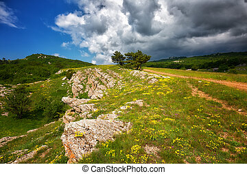 Beautiful mountain landscape in summer day on a plateau...