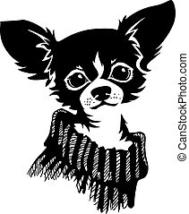 Chihuahua dog - vector illustration - The head of chihuahua...