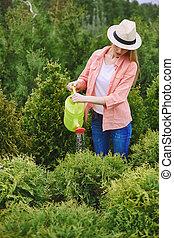 Working in the garden - Young gardener watering green plants