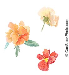 Set of flowers viola violet Watercolor vector illustration...
