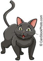 Black cat standing alone