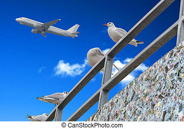 Gulls, blue sky, airplane - Four seagulls on Gelänger on...