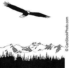 Bald Eagle - Haliaeetus leucocephalus - with mountains