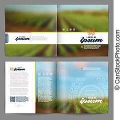 Wine and winemaking booklet - Vector template booklet page...