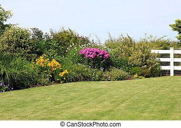 Perennial garden - Summer garden lawn with perennial border...