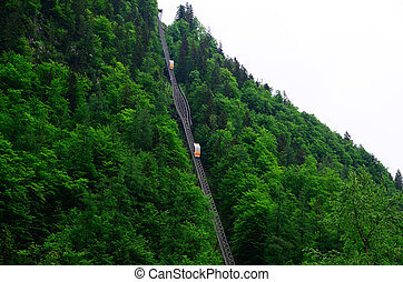 cable car on mountain with forest - cable car on mountain...