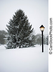 Snowy Lamp Post and Pine - A gas lamp post and fresh snow on...
