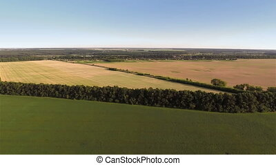 Flying over fields - Aerial shot: Flying over fields