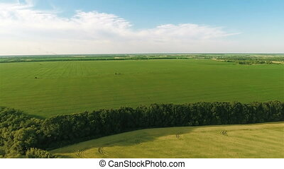 Flying Over Big Green Field - Aerial shot: Flying Over Big...