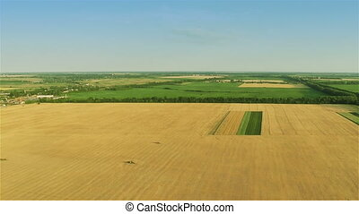 Fast Flying Over Yellow Field - Aerial shot: Flying over...