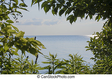 View of lake Erie - A view of lake erie from Point Pelee...
