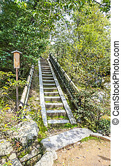 Staircase ascent in nature