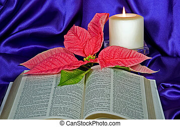 Christmas Day - Candle and poinsettia with Holy Bible.