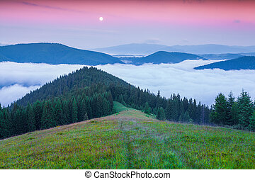 Early morning in the summer Carpathian mountains Lisniv...