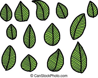 Vector Illustration hand drawn doodles green leaves collection