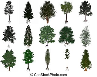 Set or collection of common trees - 3D render - Set or...