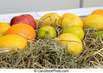 apples oranges and lemons on the market
