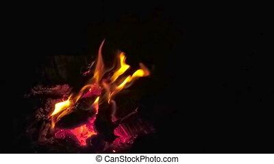 Bonfire at Night Slow Motion