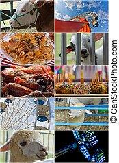 collage, sommar, karneval